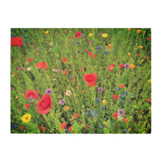 Wild flowers Spring Photo Wood Wall Art