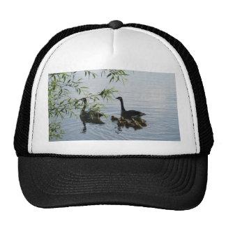 Wild Geese Hat