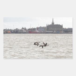 Wild Geese Rectangular Sticker
