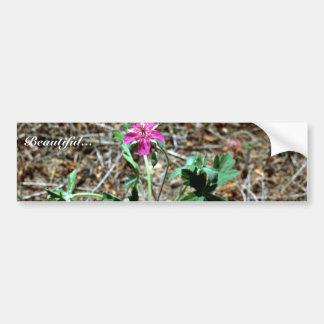 Wild Geranium Bumper Sticker