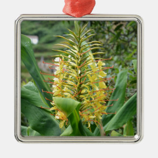 Wild Ginger. Christmas Ornament