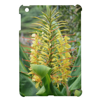 Wild Ginger. Covers For iPad Mini