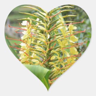 Wild Ginger. Heart Sticker