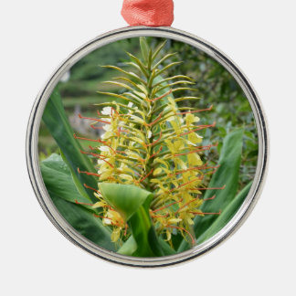 Wild Ginger. Silver-Colored Round Decoration