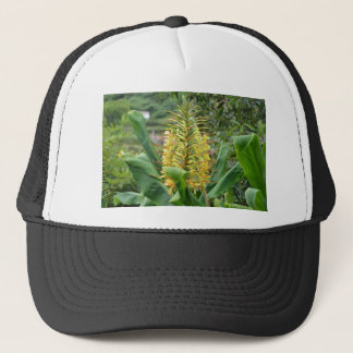 Wild Ginger. Trucker Hat