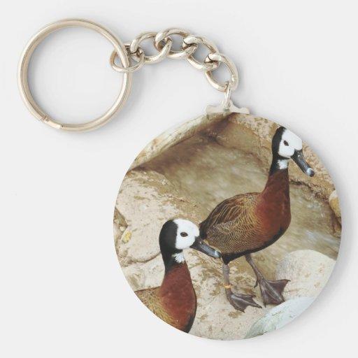 Wild Golden Hybrid Ducks Key Chain