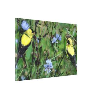 Wild Goldfinch Finch Bird Wildlife Animal Flowers Gallery Wrapped Canvas