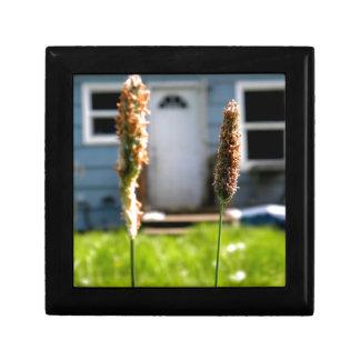 Wild Grass Small Square Gift Box