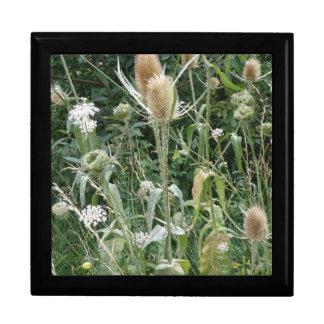 Wild Grasses Gift Box