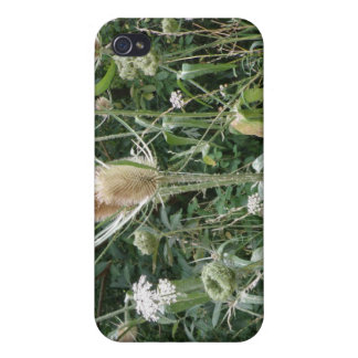 Wild Grasses  iPhone 4/4S Cover