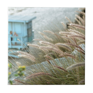 Wild grasses on Malibu beach California Tile