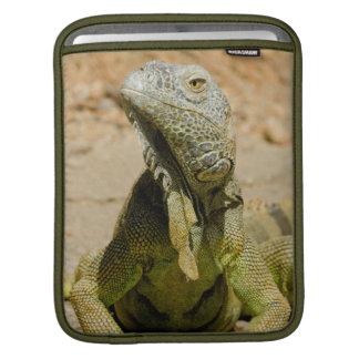 Wild Green iguana iPad Sleeve