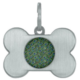 wild green peacock feathers pet ID tag