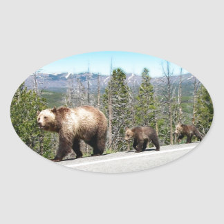 Wild Grizzly Bear Mama and Cubs in Yellowstone Oval Sticker