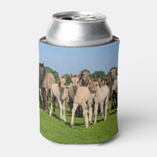 Wild Grullo Color Dulmen Horses Foals Funny Bawdle Can Cooler