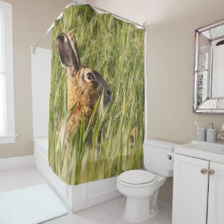 Wild hare bathing in the morning sunlight shower curtain