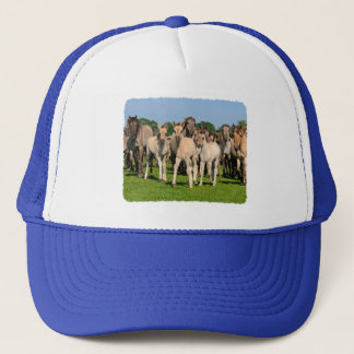 Wild Herd Grullo Colored Dulmen Horses Foals - cap