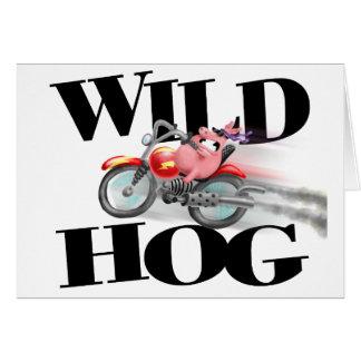Wild Hog Birthday card