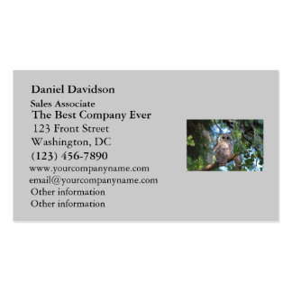 Wild Hoot Owl Staring in the Forest Pack Of Standard Business Cards