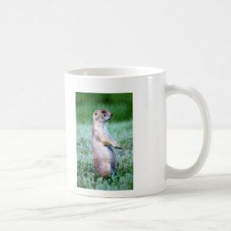 Wild Horse and Prarie Dog Basic White Mug