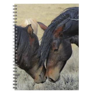 Wild horse couple note book