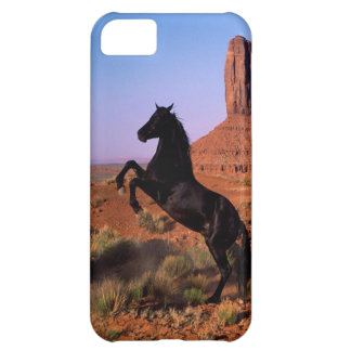 Wild Horse Monument Valley iPhone 5C Case