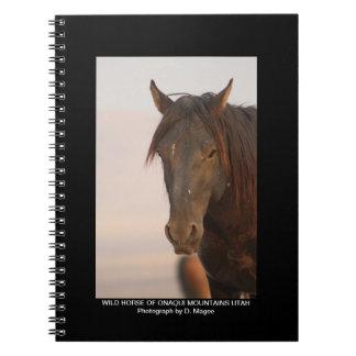 WILD HORSE OF ONAQUI MOUNTAINS OF UTAH SPIRAL NOTEBOOK