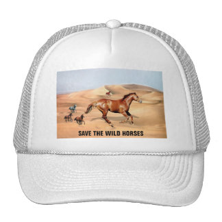 Wild horses and sand dunes cap