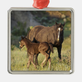 Wild Horses at Theodore Roosevelt National Park Christmas Ornament