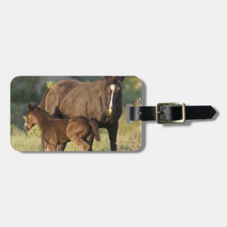 Wild Horses at Theodore Roosevelt National Park Luggage Tag