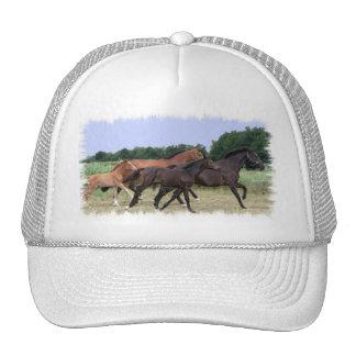Wild Horses Baseball Hat