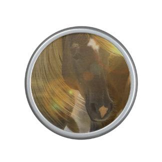 Wild Horses Speaker