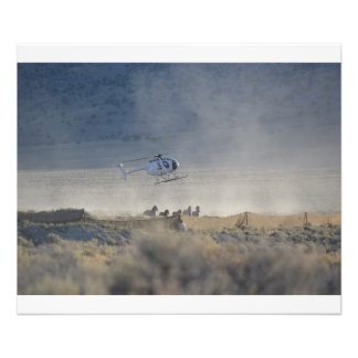 Wild Horses Eating Dust, Newark Valley Nevada Photographic Print