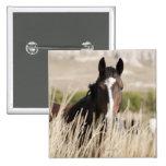 Wild horses in South Dakota 15 Cm Square Badge