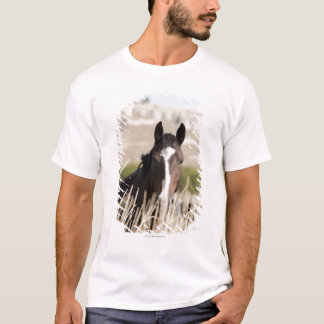 Wild horses in South Dakota T-Shirt
