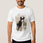 Wild horses in South Dakota Tee Shirts