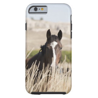 Wild horses in South Dakota Tough iPhone 6 Case