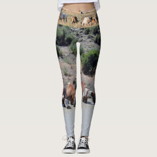 Wild Horses of Sand Wash Basin Boot Leggings