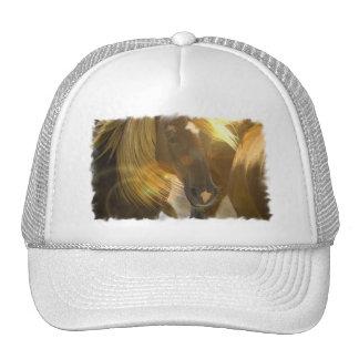 Wild Horses Photo Baseball Hat