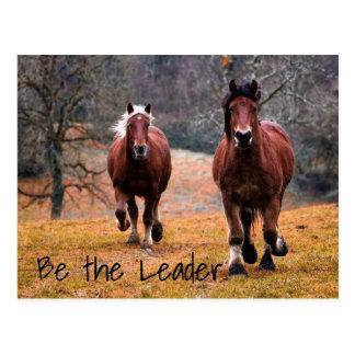 Wild Horses Racing in Woods Postcard