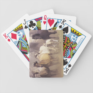 Wild horses running bicycle playing cards