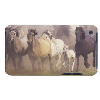 Wild horses running iPod touch cover
