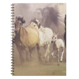 Wild horses running notebook