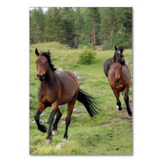 Wild Horses Running Table Cards