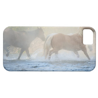Wild horses running through water iPhone 5 cases
