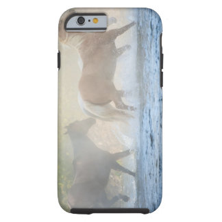 Wild horses running through water tough iPhone 6 case