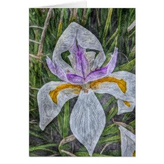 Wild Iris Blank Card