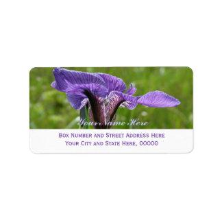 Wild Iris, Iris setosa Label
