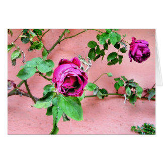 Wild Irish Rose Card