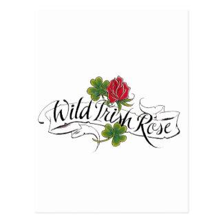 Wild Irish Rose Post Card